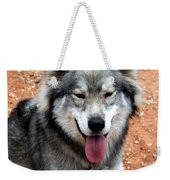 Siberian Husky With Blue And Brown Eyes Weekender Tote Bag