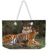 Siberian Tiger Cub Guarding Mom Wildlife Rescue Weekender Tote Bag