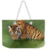 Siberian Tiger Cub In Pond Endangered Species Wildlife Rescue Weekender Tote Bag