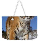 Siberian Tiger No. 1 Weekender Tote Bag