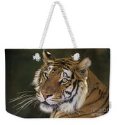 Siberian Tiger Portrait Endangered Species Wildlife Rescue Weekender Tote Bag