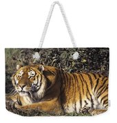 Siberian Tiger Stalking Endangered Species Wildlife Rescue Weekender Tote Bag