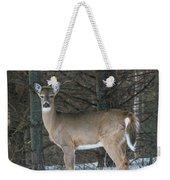 Side Of The Road Deer Weekender Tote Bag