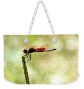 Side View Of A Calico Pennant Weekender Tote Bag