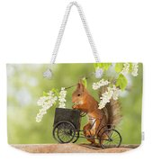 Side View Of Red Squirrel Playing Weekender Tote Bag