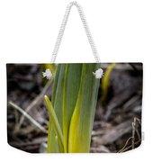 Sign Of Spring 2 Weekender Tote Bag