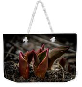 Sign Of Spring In Red Weekender Tote Bag