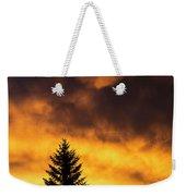 Silhouetted Evergreen Tree Weekender Tote Bag