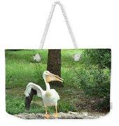Silly Bird Weekender Tote Bag
