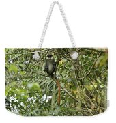 Silly Red-tailed Monkey Weekender Tote Bag