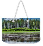 Silver Reflections Weekender Tote Bag