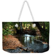 Silver River Channel In Autumn Weekender Tote Bag