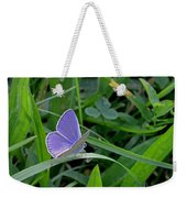 Silver Studded Blue Butterfly Weekender Tote Bag