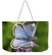 Silvery Blue Butterfly Weekender Tote Bag