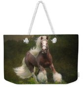 Simon And The Storm Weekender Tote Bag