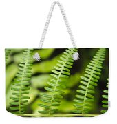 Simple Green Weekender Tote Bag by Adam Romanowicz