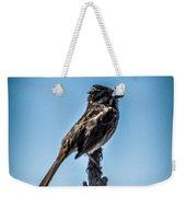 Singing Song Sparrow Weekender Tote Bag