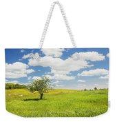 Single Apple Tree In Maine Blueberry Field Weekender Tote Bag