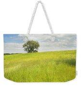 Single Apple Tree In Maine Hay Field Weekender Tote Bag