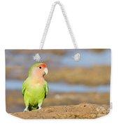 Single Love Bird Seeks Same Weekender Tote Bag