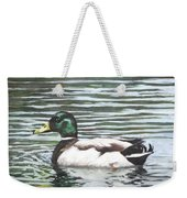 Single Mallard Duck In Water Weekender Tote Bag
