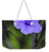 Single Purple Mexican Petunia Ruellia Brittoniana Weekender Tote Bag