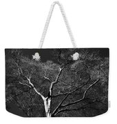 Single Tree With New Spring Leaves In Black And White Weekender Tote Bag