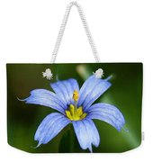Sisyrinchium Angustifolium Weekender Tote Bag