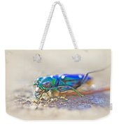 Six-spotted Tiger Beetle - Cicindela Sexguttata Weekender Tote Bag