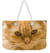 Skc 1483 Unconcerned Stare Weekender Tote Bag
