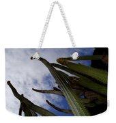 Sky Cactus Weekender Tote Bag