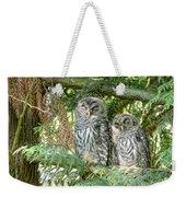 Sleeping Barred Owlets Weekender Tote Bag by Jennie Marie Schell
