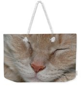 Sleeping Cat Face Closeup Weekender Tote Bag