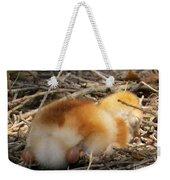 Sleeping Chick Weekender Tote Bag