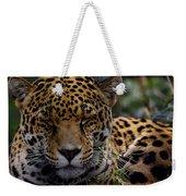 Sleeping Jaguar Weekender Tote Bag