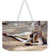 Sleeping Kangaroo Weekender Tote Bag
