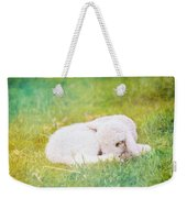 Sleeping Lamb Green Hue Weekender Tote Bag