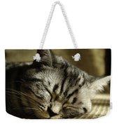 Sleeping Pet Weekender Tote Bag