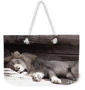 Sleepy Beauty Weekender Tote Bag