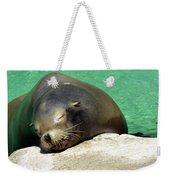 Sleepy Seal Weekender Tote Bag