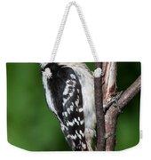 Sleepy Woodpecker Weekender Tote Bag