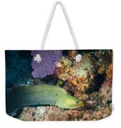 Slithering Moray Weekender Tote Bag