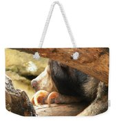 Sloth Bear Weekender Tote Bag