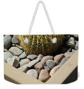 Small Barrel Cactus In Planter Weekender Tote Bag