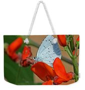 Small Blue Butterfly Weekender Tote Bag