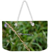 Small Blue Dragonfly Weekender Tote Bag