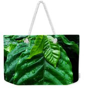 Small Leaves With Water Drops Weekender Tote Bag