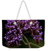 Small Purple Flowers On A Verbena Plant Weekender Tote Bag