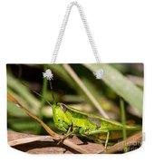 Smaragd-green Grasshopper Weekender Tote Bag