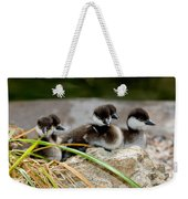 Smew Ducklings On Shore Weekender Tote Bag